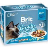 Брит (Brit Premium Family Plate Gravy) набор паучей семейная тарелка для кошек, кусочки в соусе 12*85г